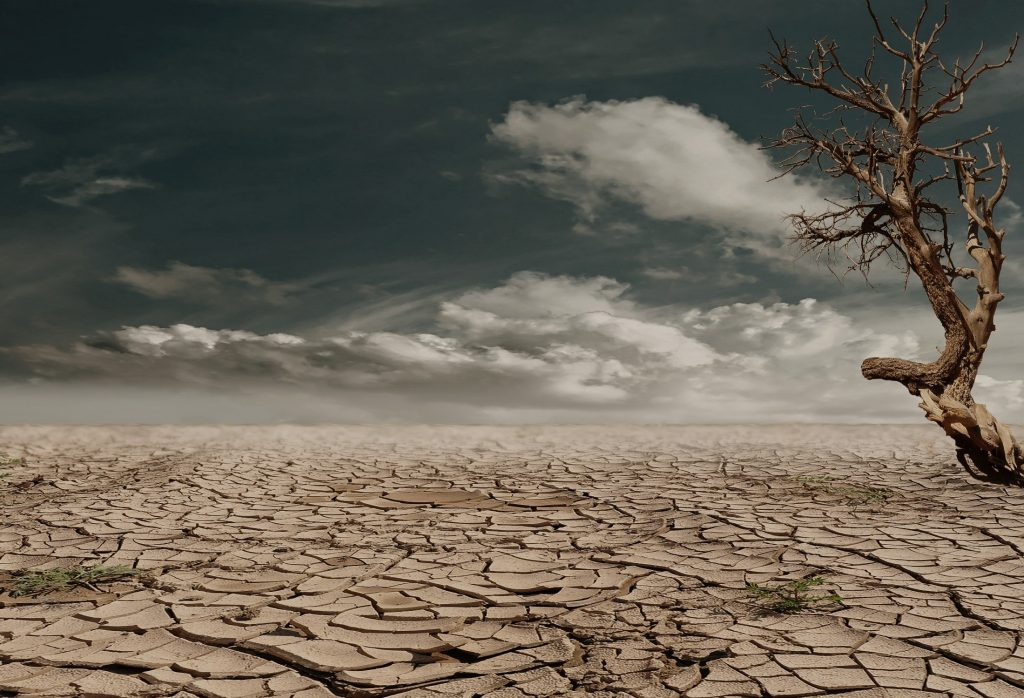 droughts all over the world