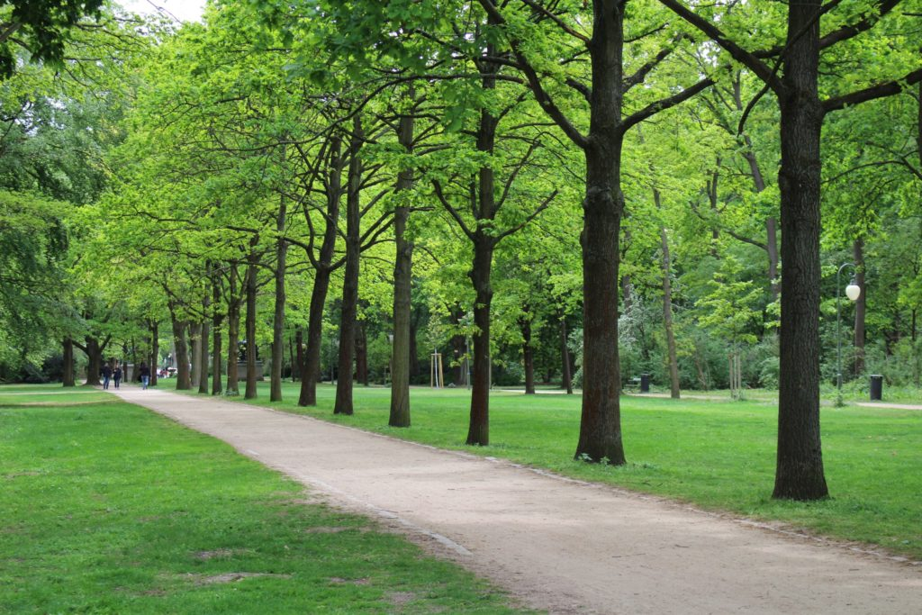 Go to a local park to satisfy your wanderlust